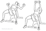Incline Chest Fly