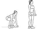 Romanian Deadlift Dumbbells